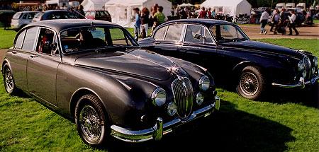 Old Jaguars on display