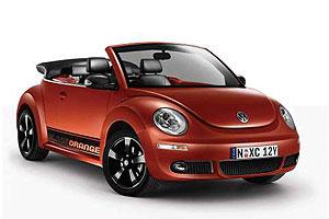 blackorange-beetle